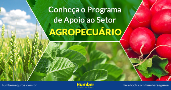 Programa de Apoio ao Desenvolvimento do Setor Agropecuário (Prodesa)