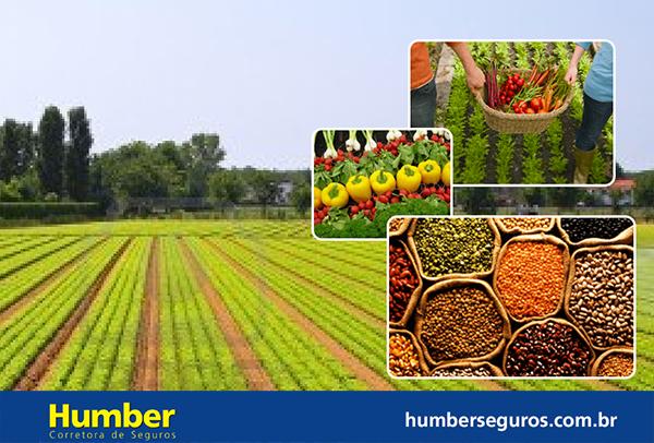 Governos estadual e federal lançam medidas de apoio à agricultura