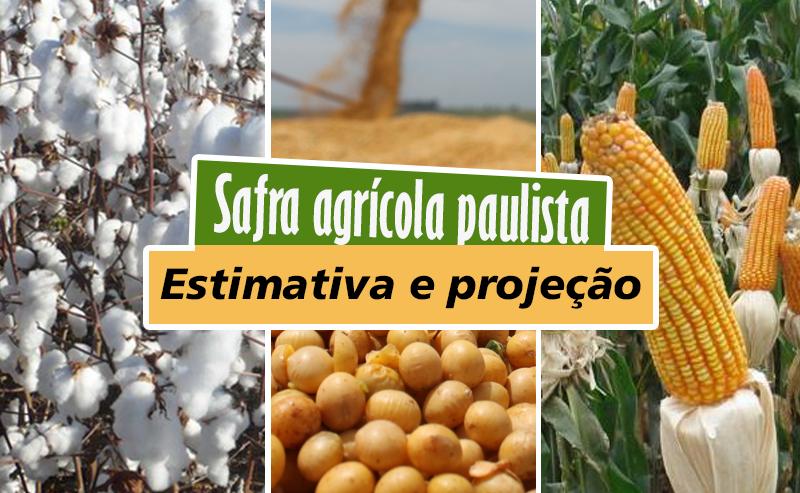 safra-agricola-1