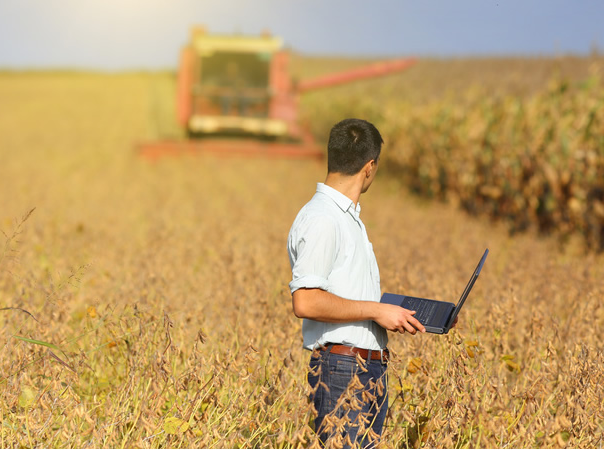 Seguro agrícola: vale a pena contratar ou não?