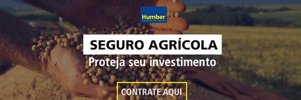 Exportação de café reduz 5,9% em janeiro, diz Cecafé