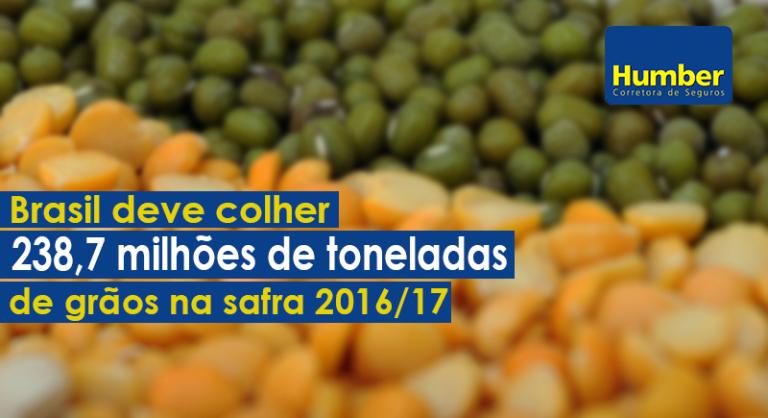 Brasil deve colher 238,7 milhões de toneladas de grãos, diz Conab