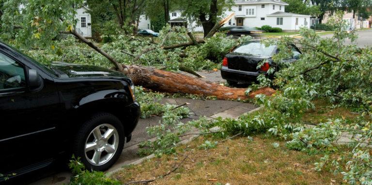 Saiba agora se um seguro cobre danos da natureza!