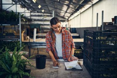 Veja o que avaliar para fazer a compra de insumos agrícolas