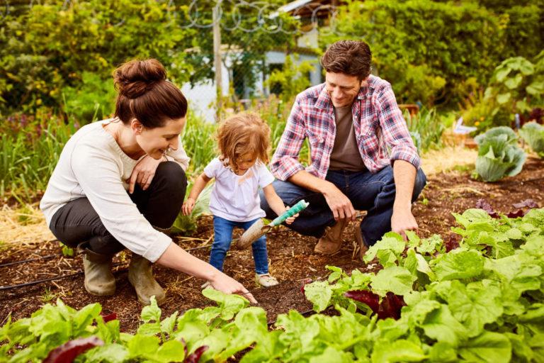 Futuro da família: entenda por que e como planejá-lo