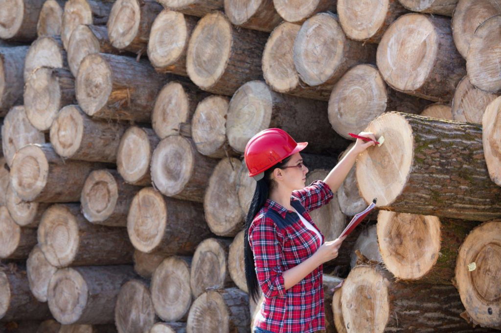 seguro florestal