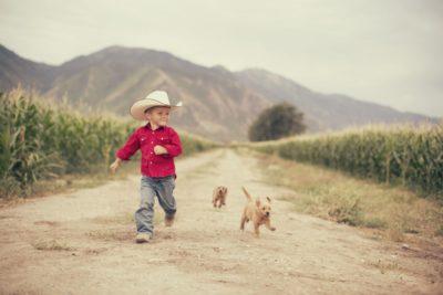 Entenda como funciona a subvenção ao Prêmio do Seguro Rural