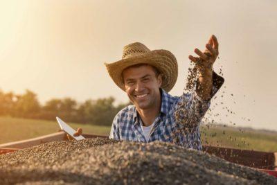 Confira o que é e como funciona a gestão do agronegócio