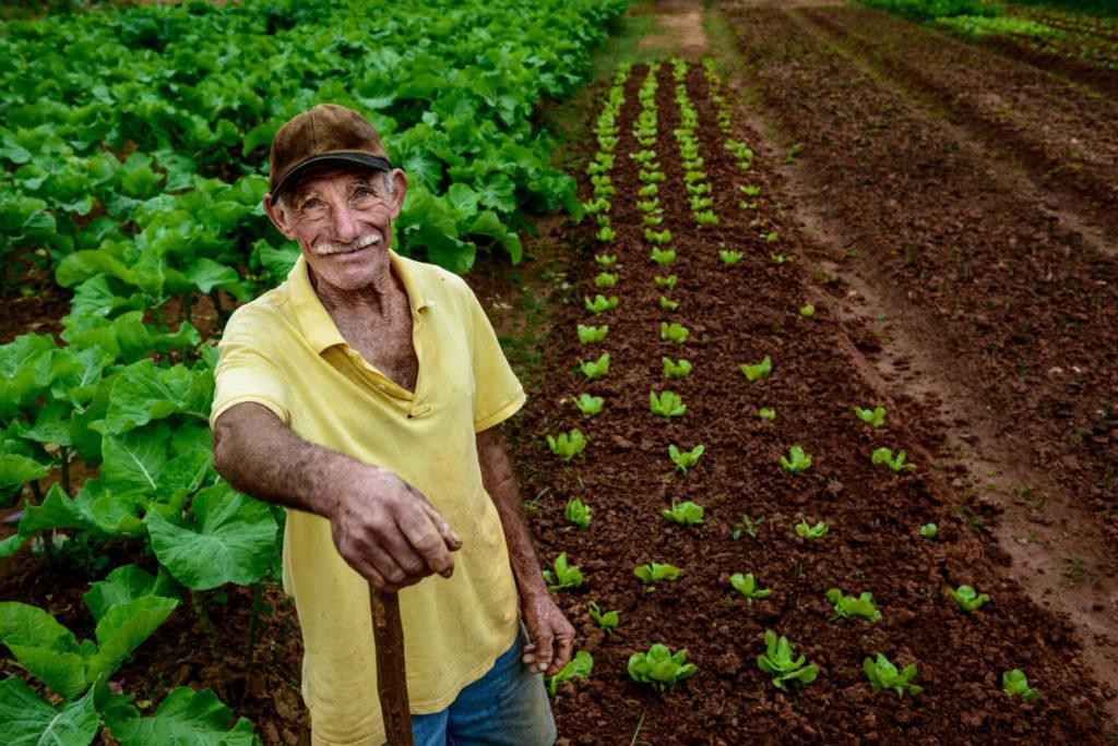 seguro de vida do produtor rural