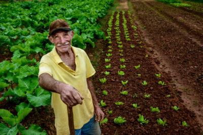 9 vantagens do seguro de vida do produtor rural