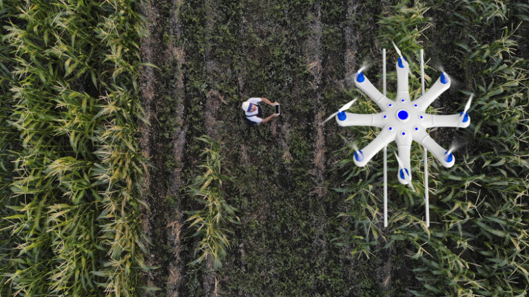 Agricultura 4.0: o que você precisa saber?