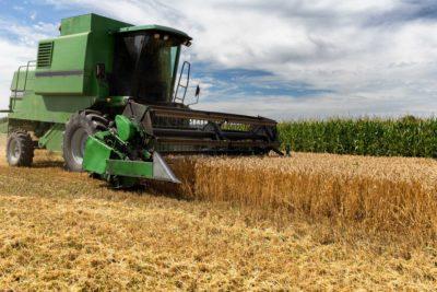 Aprenda o que é a colheita mecanizada e quais seus benefícios!