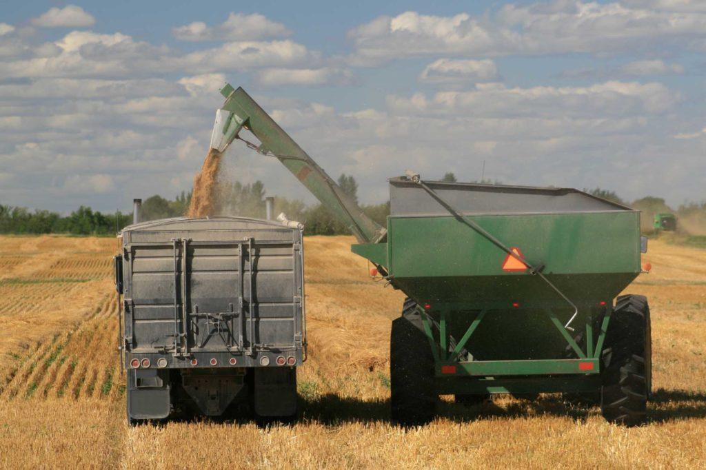 logistica agricola