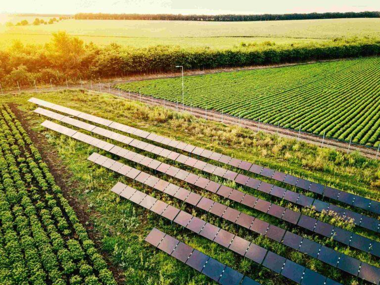 Energia solar rural: entenda o que é e como pode ser vantajosa para você